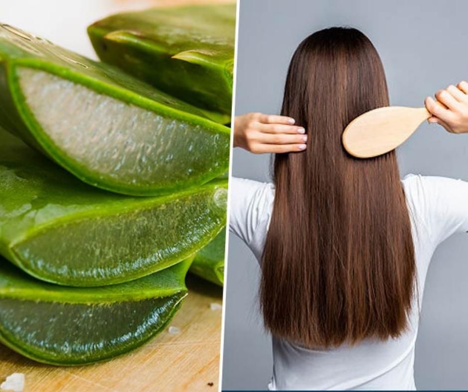 DIY ALOE VERA HAIR MASK FOR LONG HAIR